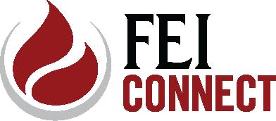 FEI Connect Logo TEST2